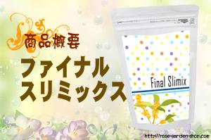 ファイナルスリミックス/商品概要・評価