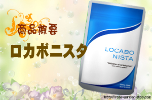 ロカボ二スタ/商品概要・評価