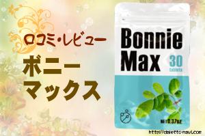 BonnieMax口コミ画像2